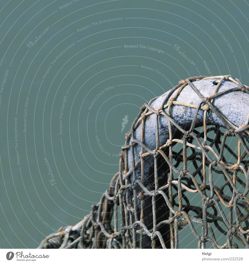 Blue Ocean Calm Dark Gray Metal Line Brown Arrangement Esthetic Authentic Uniqueness Simple Plastic Net Thin