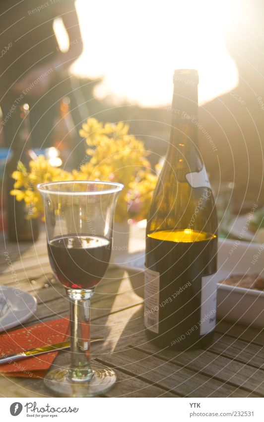 Summer Wine Food Beverage Alcoholic drinks Glass Esthetic Happiness Joie de vivre (Vitality) Spring fever Bottle of wine Wine glass Forsythia blossom Dazzle