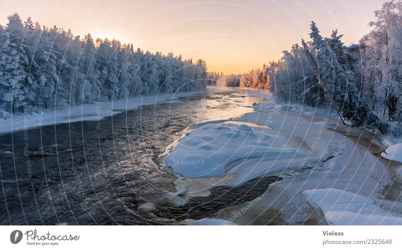 -28° II Finland Snow Snowfall Ice Frozen Rovaniemi Fog Sunset Orange Forest Fir tree White River Cold Winter