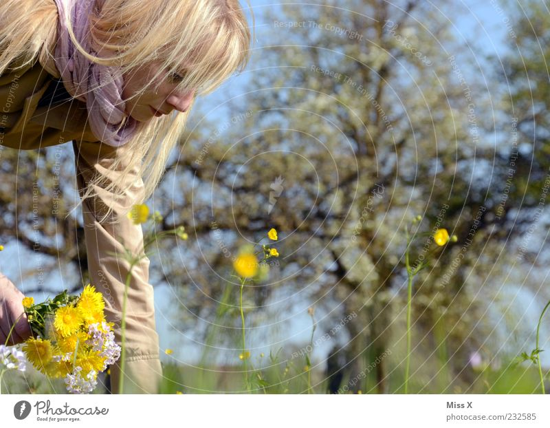Human being Woman Nature Youth (Young adults) Beautiful Tree Plant Summer Leaf Calm Adults Yellow Meadow Feminine Garden Blossom