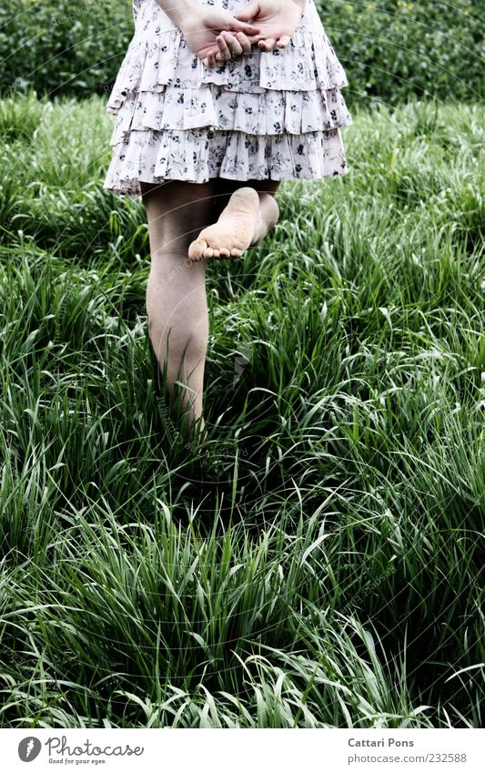 Human being Nature Youth (Young adults) Green Plant Girl Calm Black Feminine Grass Young woman Legs Fashion Feet Going Contentment