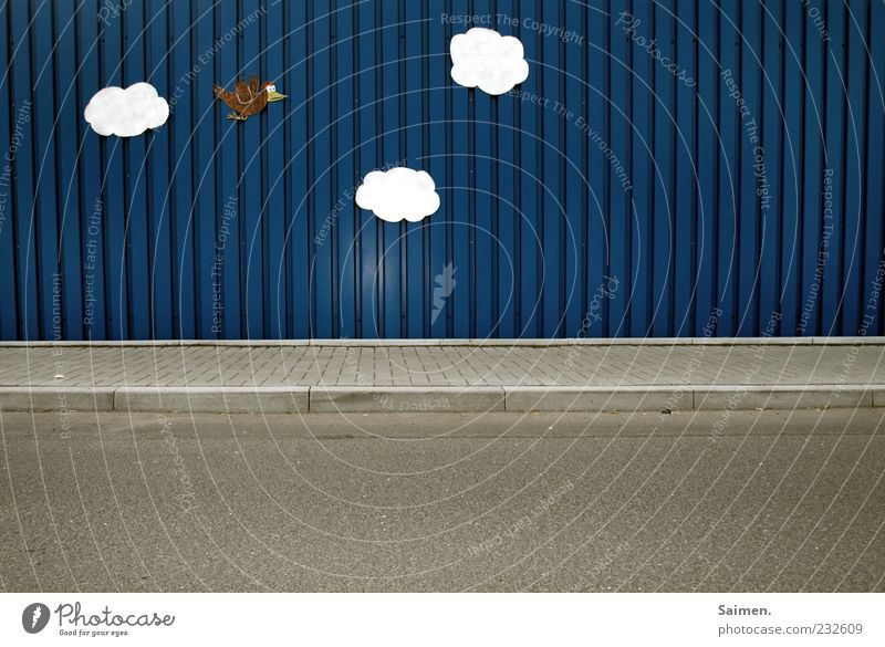 sky on the street Wall (barrier) Wall (building) Flying Blue Gray Joy Happy Happiness Contentment Whimsical Bird Clouds Tin Street Production Painted