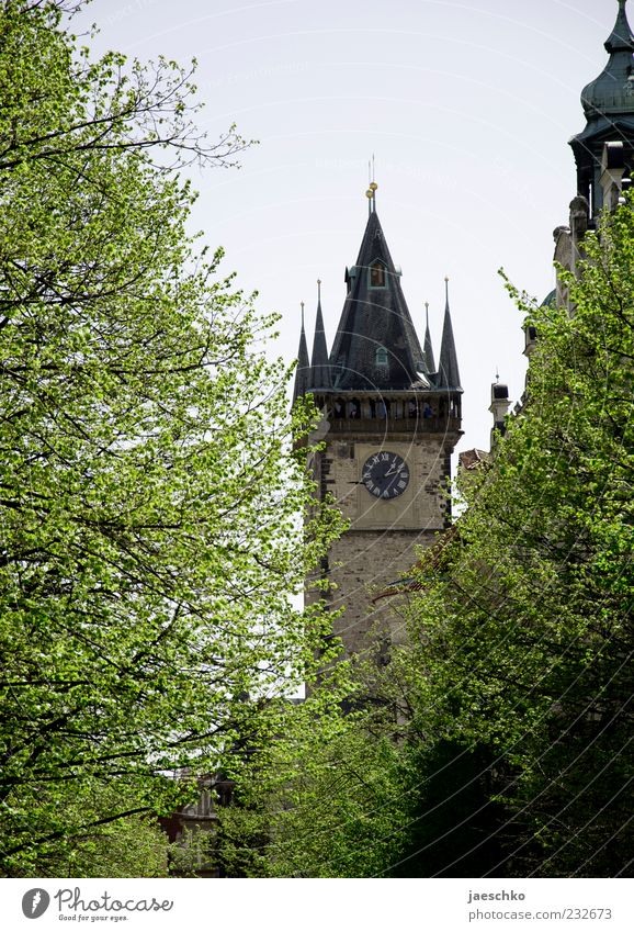 Prague Spring Czech Republic Capital city Old town Church Manmade structures Architecture Tourist Attraction Landmark Historic Tree Tower Church tower clock