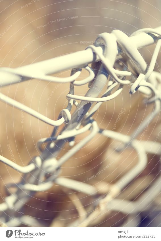 Network Wire Section of image Barrier Reticular Wire netting fence Wire netting Wire mesh Wire fence Wiry Wire basket