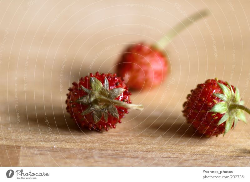 Five and a half days in the strawberry season Food Fruit Strawberry Nutrition Organic produce Vegetarian diet Slow food Plant Wood Fresh Healthy Juicy Sweet