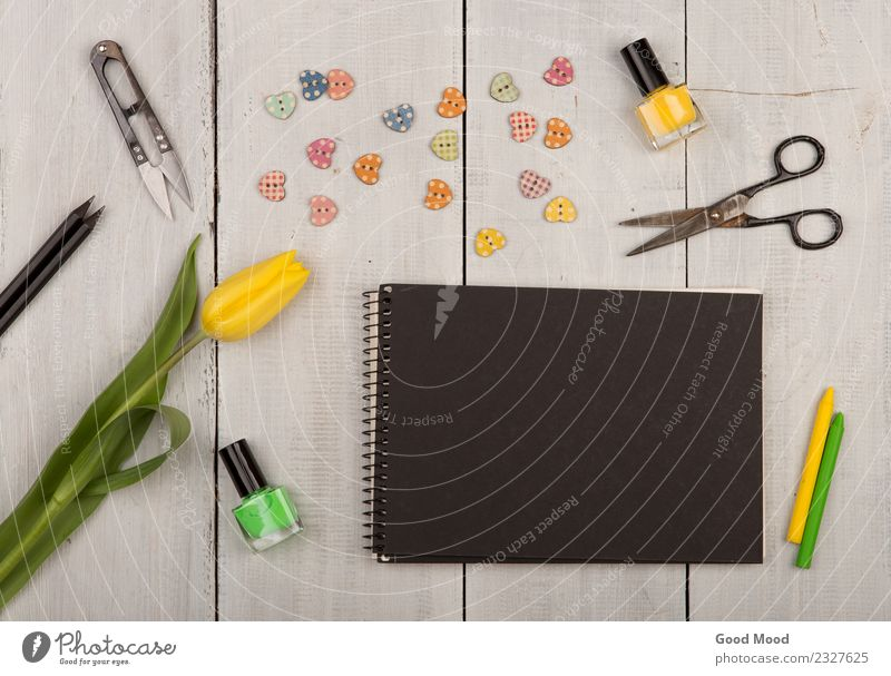 Flower tulip, blank black notepad, scissors Plant Summer Colour Green White Black Life Yellow Autumn Love Natural Wood Art Copy Space Decoration
