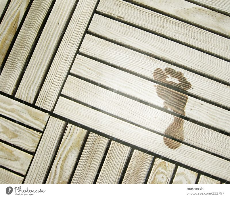 Summer Wood Feet Wet Footprint Footbridge Barefoot Sauna