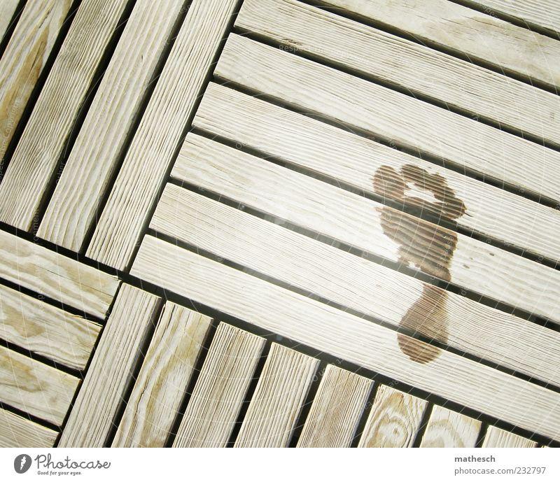 Summer Wood Feet Wet Footprint Footbridge Barefoot Sauna
