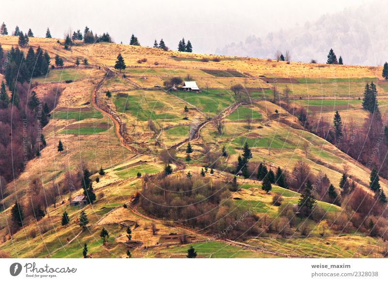 Mountains village on hillsides. Spring landscape Nature Vacation & Travel Plant Summer Beautiful Green Landscape Tree House (Residential Structure) Forest