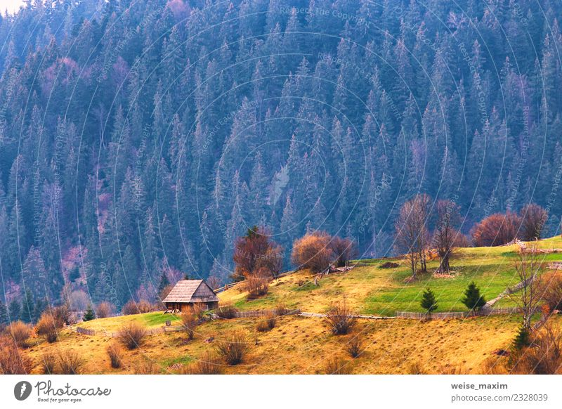 Mountains village on hillsides. Lone house on green hills Nature Vacation & Travel Summer Beautiful Green Landscape Tree House (Residential Structure) Forest