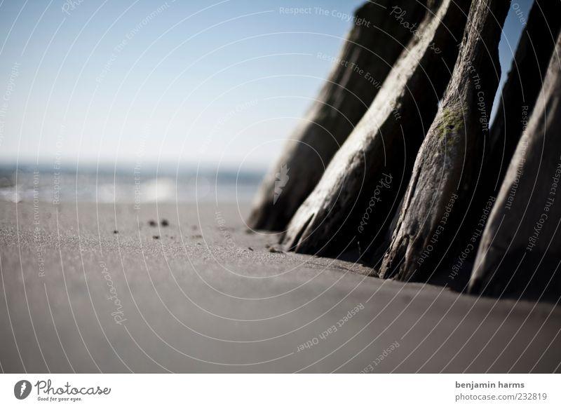 Nature Ocean Beach Calm Landscape Sand Coast Baltic Sea Blue sky Perspective Sandy beach Wooden stake