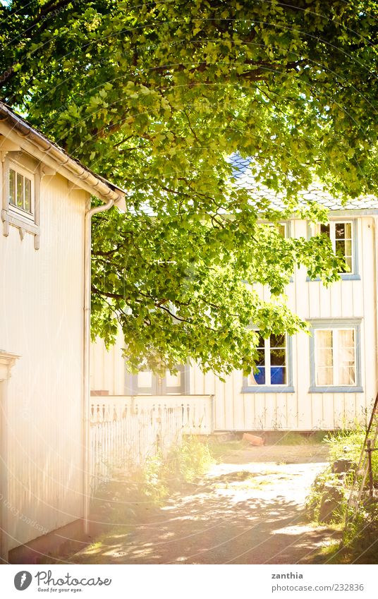 summer Village Deserted House (Residential Structure) Building Idyll Lanes & trails Living or residing Contentment Norway Scandinavia Wooden house Tree Treetop