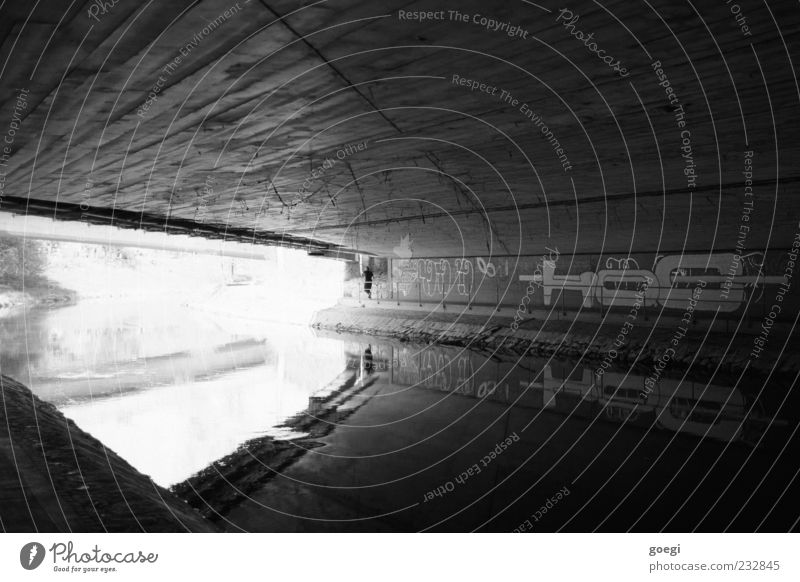 At the river I River bank Brook Bridge Concrete Water Graffiti Dirty Ceiling Smoothness Cobwebby Black & white photo Exterior shot Day Reflection
