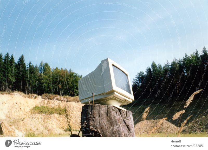 Insight into nature Vantage point Forest Screen Electrical equipment Technology Nature
