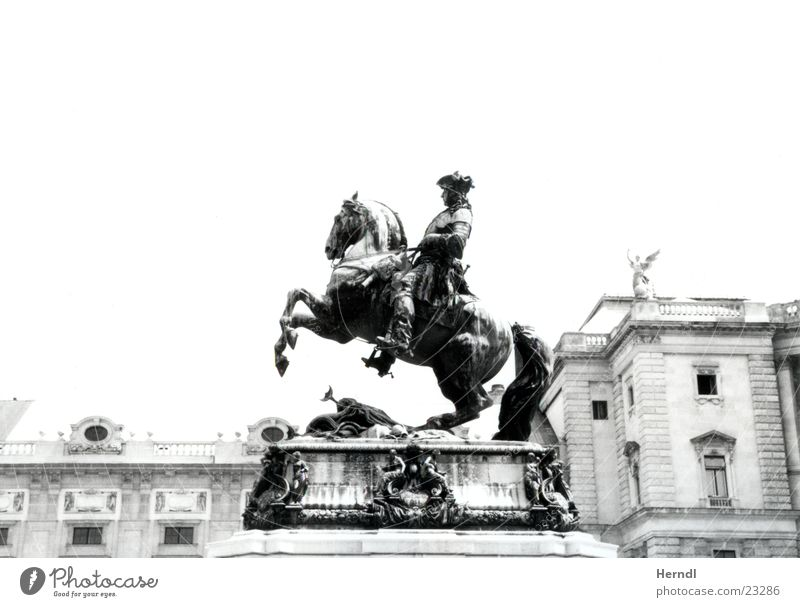 The rider in front of the Hofburg Statue Horse Vienna Black White King Historic Rider
