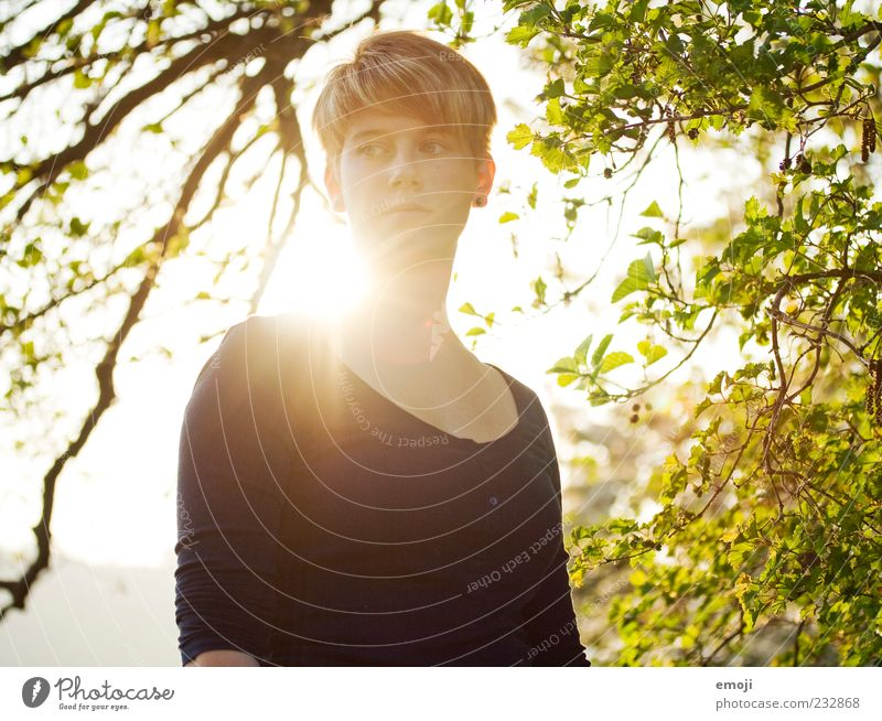 Human being Nature Youth (Young adults) Beautiful Tree Sun Leaf Adults Feminine Warmth Spring Natural 18 - 30 years Young woman Portrait photograph Short-haired