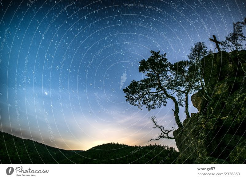 complex our starry sky Nature Landscape Air Sky Night sky Stars Autumn Tree Rock Harz Far-off places Gigantic Glittering Blue Green Black Silver White Romance