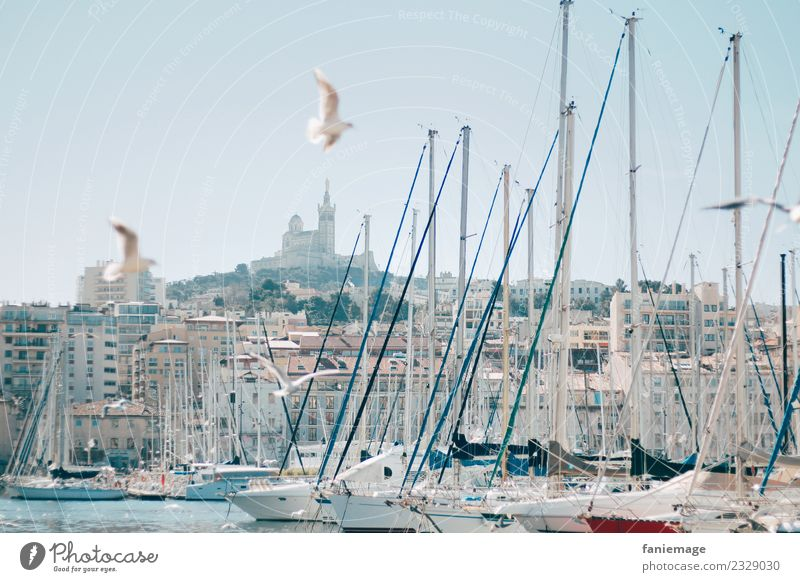 Marseilles Town Port City Historic Provence Southern France Le vieux port Harbour Sailboat Gull birds Seagull Flying Church Cathedral Notre Dame de la Garde