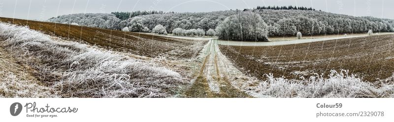 Winter in Central Hesse Far-off places Nature Landscape Weather Ice Frost Tree Field Forest Snowcapped peak Deserted Lanes & trails Esthetic Cold Long