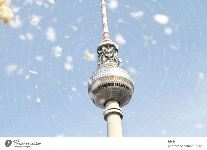 Blue Summer Berlin Architecture Spring Germany Flying Tourism Tower Feather Manmade structures Historic Landmark Downtown Downtown Berlin Capital city