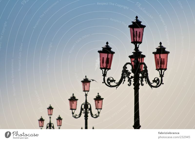 streetlamp Vacation & Travel Summer Sky Cloudless sky Deserted Blue Pink Colour photo Exterior shot Evening Twilight Street lighting Old Retro Lantern