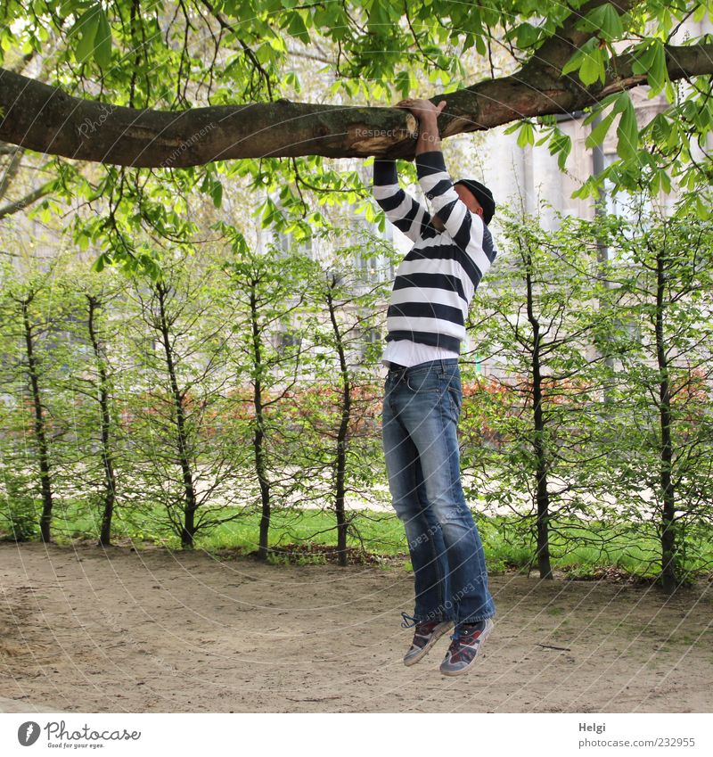 Man in jeans and striped sweater is doing pull-ups on a thick branch Life Leisure and hobbies Fitness Sports Training Human being Masculine Adults 1