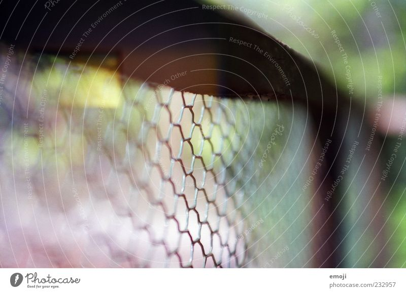 Nature Garden Network Fence Border Analog Captured Boundary Wire netting fence