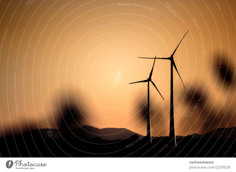 Windmills at sunset Technology Energy industry Renewable energy Wind energy plant Windmill vane Environment Landscape Climate Hill Mountain Sustainability
