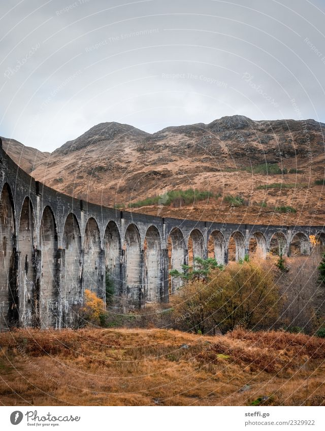 Viaduct in Scotland; film location Harry Potter Vacation & Travel Tourism Trip Adventure Far-off places Freedom Winter Mountain Hiking Environment Nature