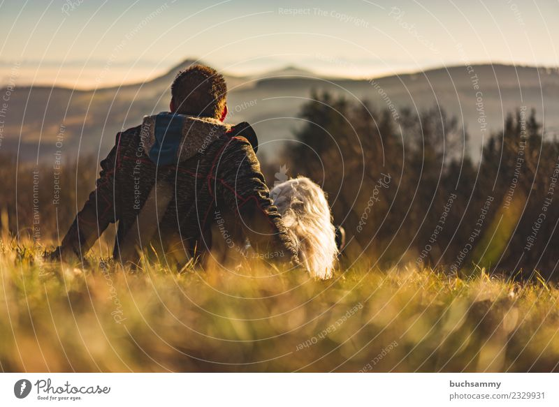 Man with his dog Far-off places Mountain Friendship Nature Landscape Meadow Pelt Black-haired Dog Sit Together Small White alpine view Man Man Back