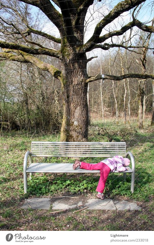 Tired by Nature Human being Child Girl Infancy 1 Plant Beautiful weather Tree Forest Lie Sleep Green Calm Boredom Fatigue Reluctance Exhaustion Bench