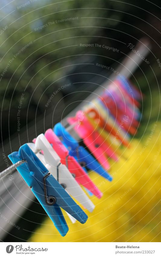 Ready to hang up Blue Yellow Red White Clothesline Clothes peg Sunlight Colour photo Exterior shot Blur Deserted Many Beaded Copy Space top Plastic
