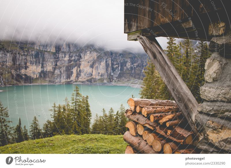 lake view Environment Nature Landscape Water Summer Fog Plant Tree Grass Forest Rock Mountain Lake Lake Oeschinen Beautiful Blue Brown Green Emotions Joy Happy