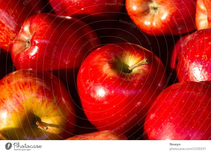 Fresh juicy red apples Food Apple Organic produce Vegetarian diet Authentic Simple sommerapfel Sweet Spotted Style Mature Delicious Red Multiple leckere
