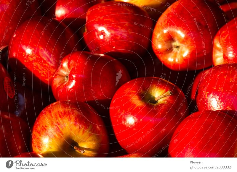 Apple collection in red and green Food Fruit Nutrition Eating Organic produce Vegetarian diet Diet Fasting Fast food Fresh Healthy Yellow Green Red bio apple