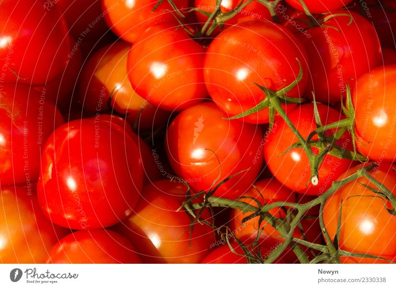 Healthy organic tomatoes Food Vegetable Fruit Nutrition Eating Organic produce Vegetarian diet Diet Fasting Green Orange Red Tomato Isolated (Position) Stalk