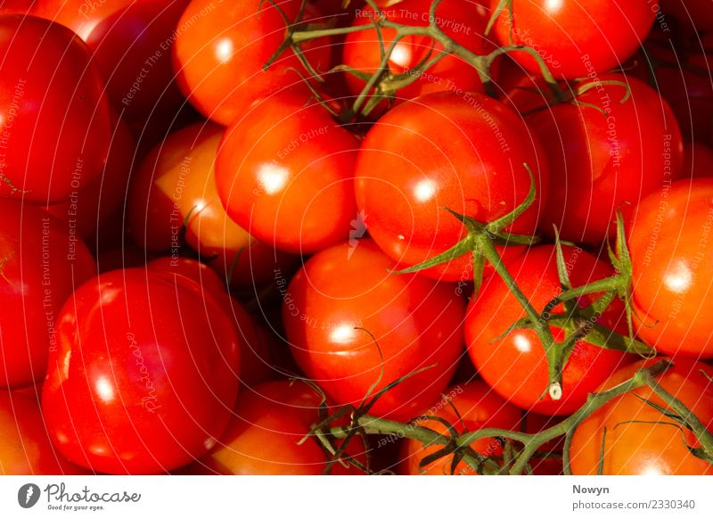 Fresh tasty healthy tomatoes Food Vegetable Lettuce Salad Fruit Tomato Red Nutrition Organic produce Vegetarian diet Diet Fasting Authentic Simple Healthy