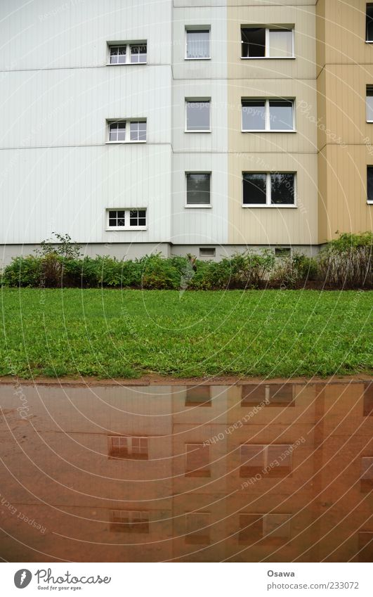 Living by the water Flat (apartment) House (Residential Structure) Building Architecture Facade Window Prefab construction GDR Hohenschönhausen Lawn Puddle