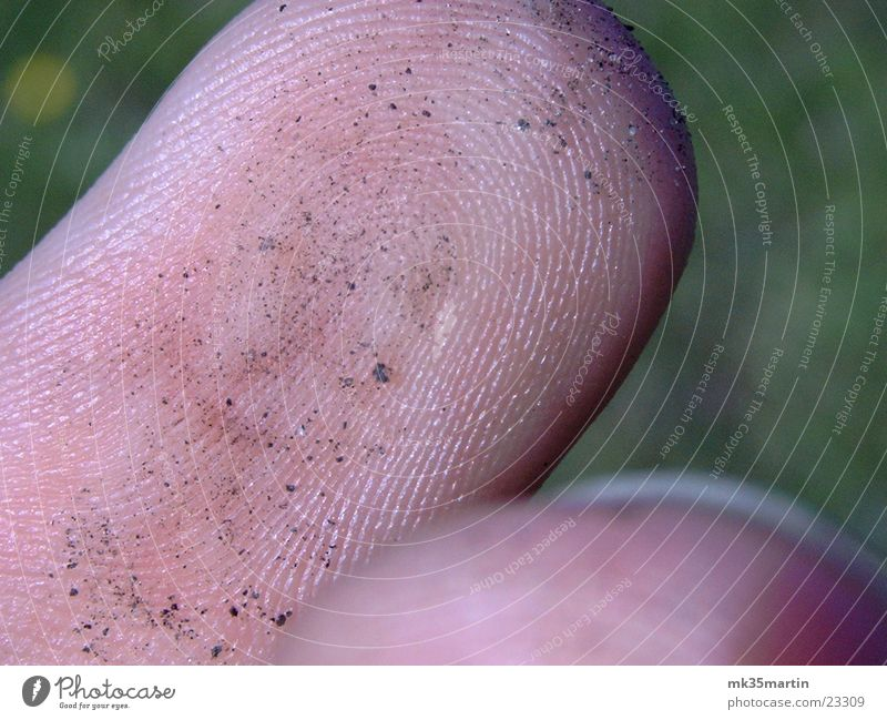 Fingers Macro (Extreme close-up) Fingerprint Fingertip