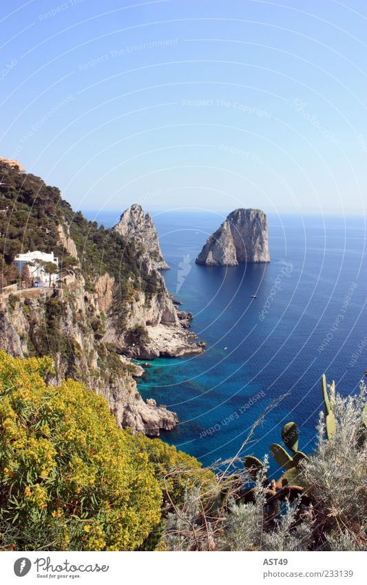 Capri with sun Calm Vacation & Travel Far-off places Summer Summer vacation Ocean Island Mountain Rock Coast Bay Italy Beautiful Relaxation Horizon Nature
