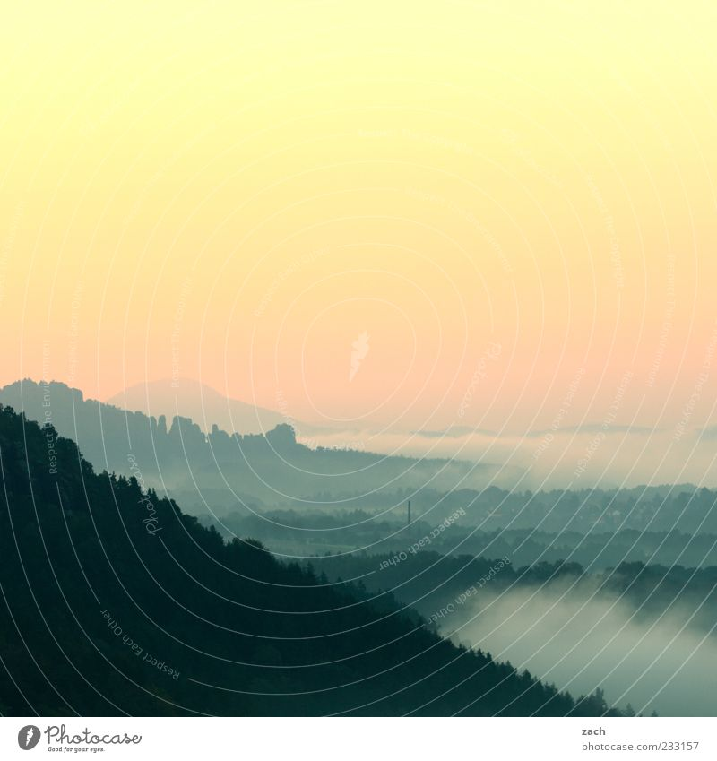 In the morning in Saxony Nature Sky Fog Tree Hill Rock Mountain Elbsandstone mountains Saxon Switzerland Schrammstone Relaxation Exceptional Blue Pink Calm