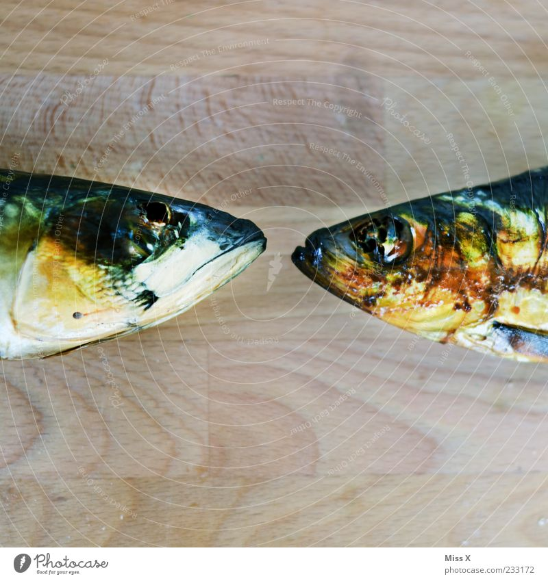 Colorful kisses Food Fish Animal 2 Gold Fish head Head Smoked Trout Mackerel Scales Colour photo Multicoloured Close-up Detail Deserted Copy Space top