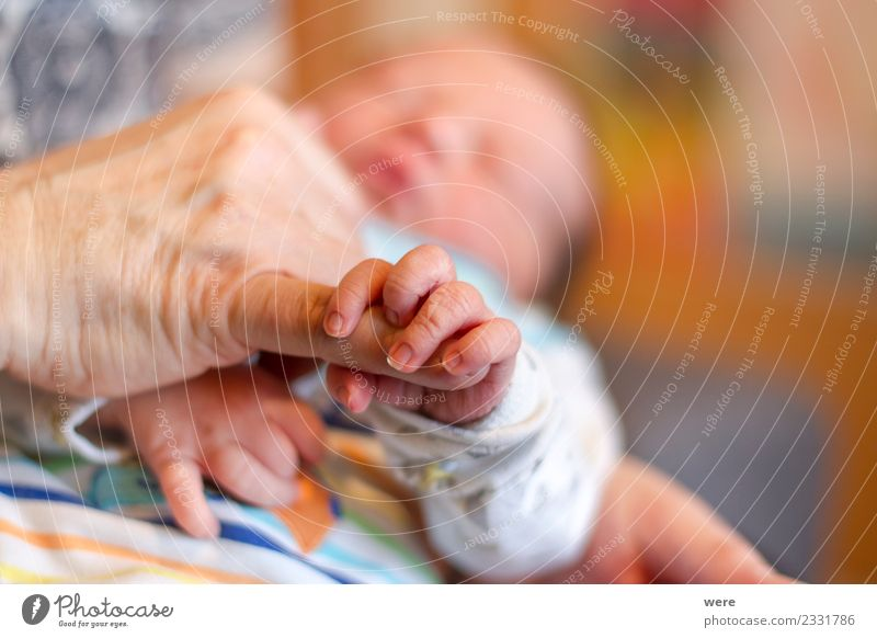 The hand of a newborn baby holds the finger of an adult Human being Baby Hand Safety Protection Safety (feeling of) Shallow depth of field sleep child clenched