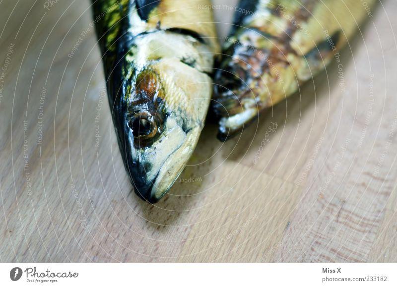 Animal Eyes Death Nutrition Cold Food Head Fish Wooden board Wood grain Scales Trout Mackerel Fish head Dead animal