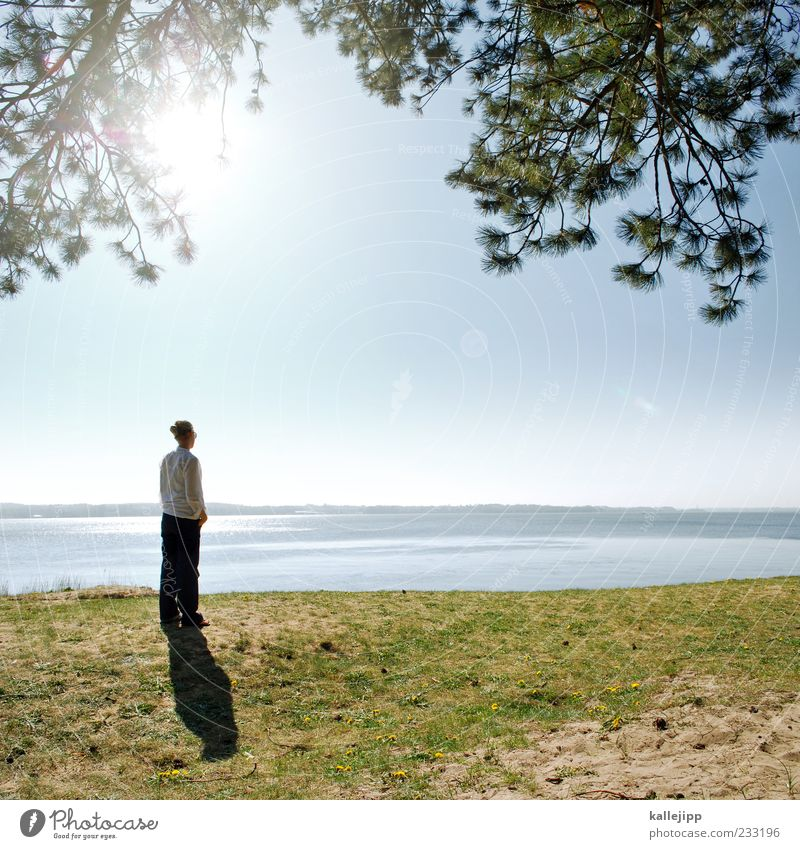 seaside Human being Woman Adults Life 1 Environment Nature Landscape Earth Water Sky Sun Climate Beautiful weather Plant Tree Coast Lakeside Beach Baltic Sea