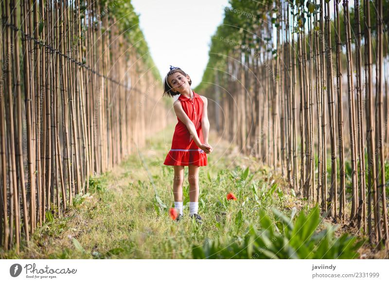 Little girl in poppies field wearing beautiful dress Lifestyle Joy Happy Beautiful Playing Summer Child Human being Feminine Baby Woman Adults Infancy 1
