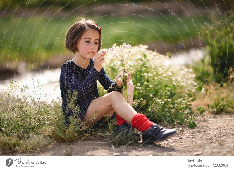 Little girl sitting in nature field with flowers in her hand. Child Woman Human being Nature Summer Beautiful Flower Joy Girl Adults Lifestyle Meadow Grass