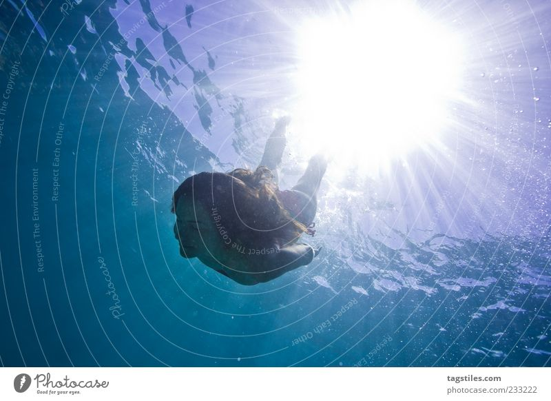 solvent Mauritius Dive Swimming & Bathing Float in the water Refrigeration Summer Sun Beam of light Woman Life Abstract Water Ocean Surface of water