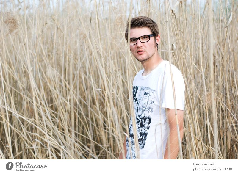 Human being Youth (Young adults) Grass Masculine Stand Eyeglasses Meditative T-shirt Young man Facial hair Common Reed Brunette Blade of grass Man Part