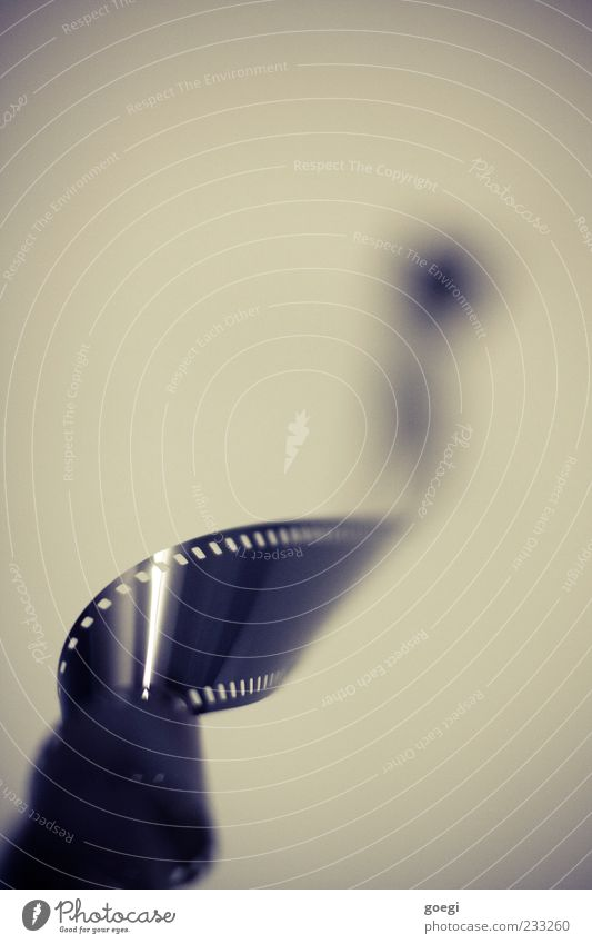 Photography Film Film industry Plastic Rotate Detail Distorted Movement Media 35mm film